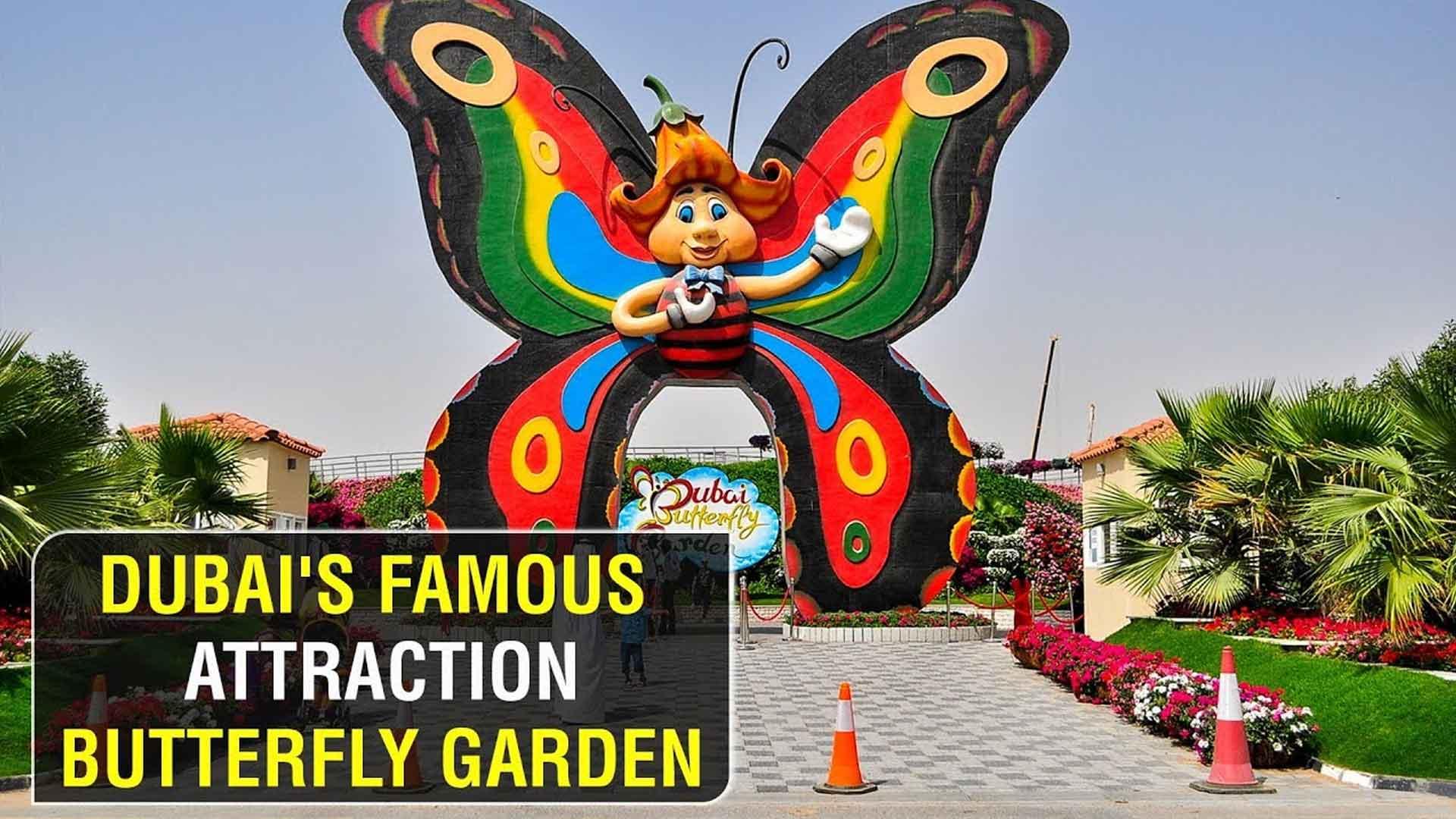 Butterfly-Garden-Dubai